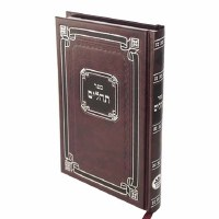 Tehillim Medium Size Maroon [Hardcover]