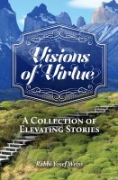 Visions of Virtue [Hardcover]