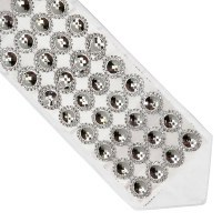 Atara Silver Colored Big Circles with Surrounding Rhinestones Design
