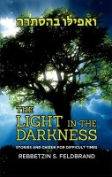 The Light in the Darkness [Hardcover]