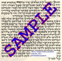 Exquisite Mezuzah Parchment Scroll Ashkenazi 12cm Ari Script by Rabbi Dovid Chaim Spitzer
