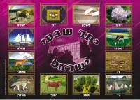 """Laminated Sukkah Poster Shevatim 20"""" x 28"""""""
