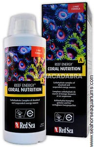 Reef Energy A Coral Nutrition