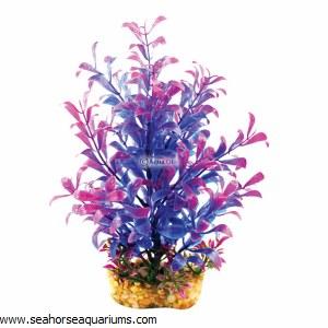 Aquaone Blue Hygrophila Med