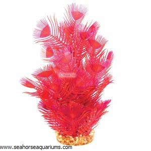 Aquaone Red Parrot Feather Lg