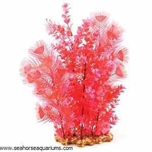 Aquaone Red Hygrophila XL