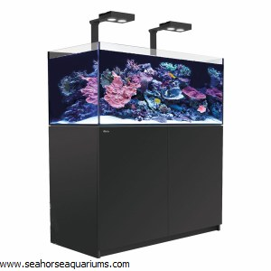 Reefer Deluxe XL 425 Black