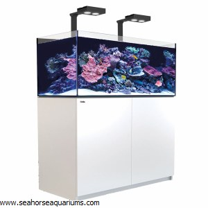 Reefer Deluxe XL 425 White