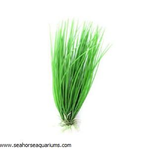 "Boyu 8"" Hairgrass Plastic P"