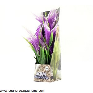 Lilac Fern 20cm