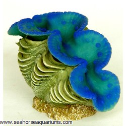 Small Clam Ornament