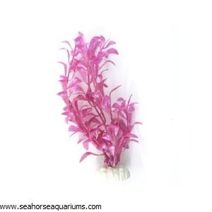 "Boyu 8"" Pink Plant Plant"