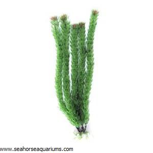 "Boyu  16"" Green Plastic Plant"