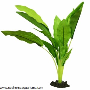 Silk Plant Amazon Broad L 30cm