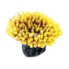 Yellow Bushey Acropora 8cm
