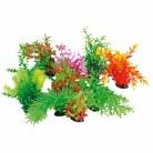 Tropical Plant 22-25cm Series