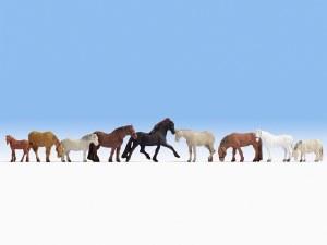 Noch N 36761 Horses (9)