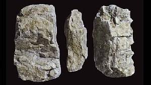 Woodland Scenics Other WC1234 Rock Mold-Random Rock (5x7)