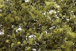 Woodland Scenics Other WF1133 Fine Leaf Foliage Olive Green