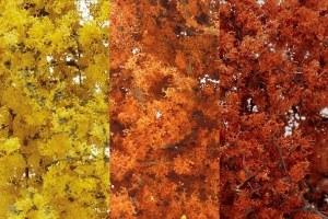 Woodland Scenics Other WF1135 Fine Leaf Foliage Fall Mix