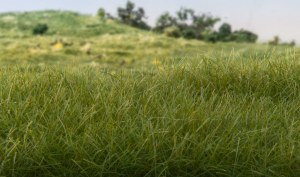 Woodland Scenics Other WFS613 2mm Static Grass Dark Green