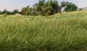 Woodland Scenics Other WFS618 4mm Static Grass Medium Green