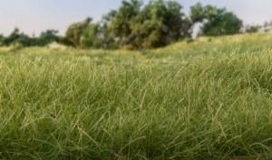 Woodland Scenics Other WFS626 12mm Static Grass Medium Green