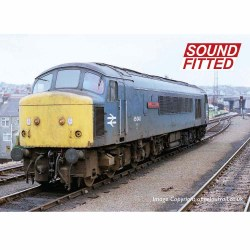 Class 45/0 45040 'The King's Shropshire Light Infantry' BR Blue Sound Fitted