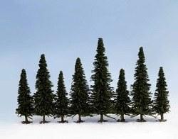 25 Fir Trees