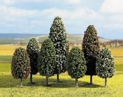 25 Deciduous Trees