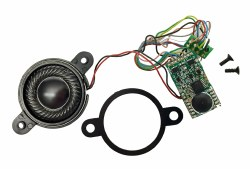 TTS Sound Decoder Steam A3 Class (8 Pin)