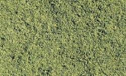 Blended Turf Green Blend