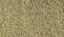 Blended Turf Earth  Blend