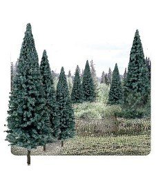 "4""-6"" Ready Made Blue Spruce Value Pack (13/Pk)"