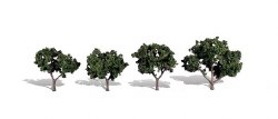 4 Cool Shade Trees Dark 2 - 3in 5.08-7.62cm