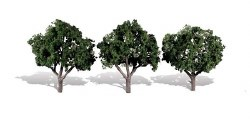 3 Cool Shade Trees Dark 3 - 4in 8-10cm