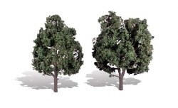 2 Cool Shade Trees Dark 5 - 6in 13-15cm