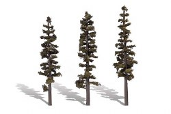 3 Standing Timber Trees Conifer 7-8in 18-20cm
