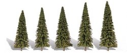 5 Forever Green Trees Fir 2-3.5in 5-8.8cm