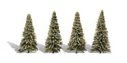 4 Blue Needle Trees Spruce 3.5-5.5in 9-14cm