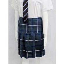 Ivybridge skirt 20S