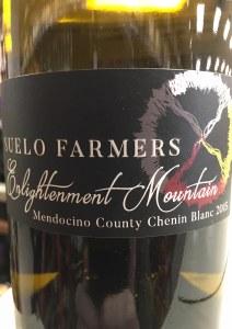 Suelo Farmers Enlightenment Mountain Chenin Blanc 2015 (750ml)