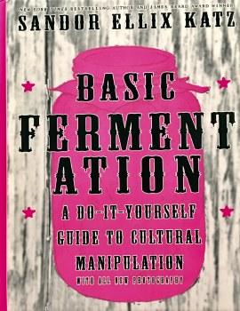 Basic Fermentation DIY Guide