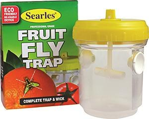 Fruit Fly Trap with wick