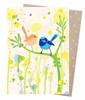 Greeting Card - Superb Fairy Wren