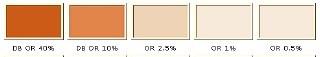 Bio Pigment 100ml Orange