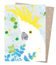 Greeting Card - Sulphur Crested Cockatoo