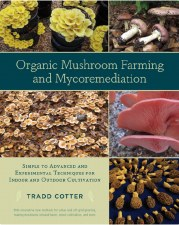 Organic Mushroom Farming