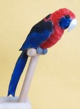 Crimson Rosella Pencil