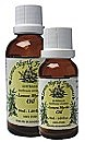 Lemon Myrtle Essential Oil 20ml